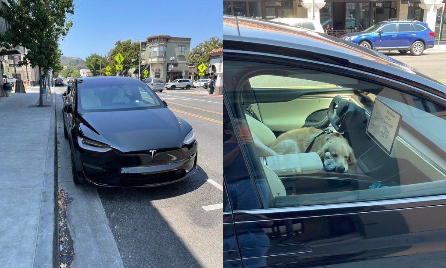 Tesla Model X Plaid spotted testing Dog Mode in the wild